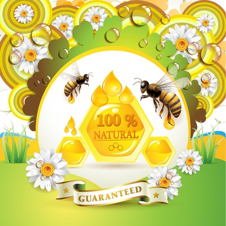 captivated: Bees and honeycombs over floral background with drops
