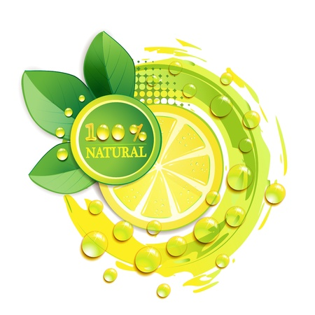 Slices yellow lemon with drops and leaf Stock Vector - 9932493