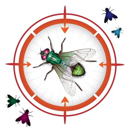 Sniper target with housefly Vector