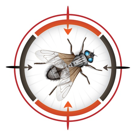 Sniper target with housefly Stock Vector - 10102305