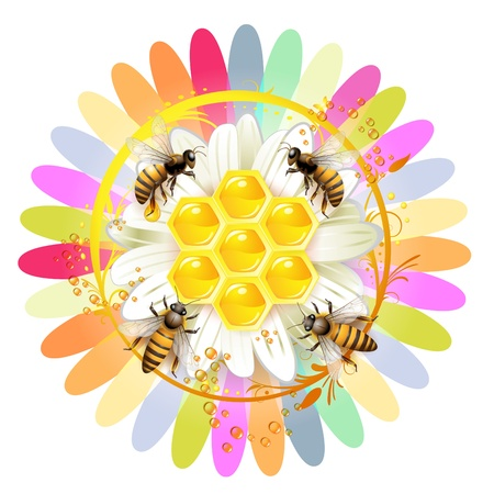 bee on white flower: Bees and honeycombs over floral background isolated on white