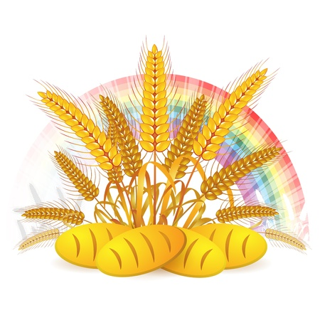 Wheat ears with bread and rainbow  Vector