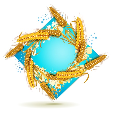 Blue background with wheat ears