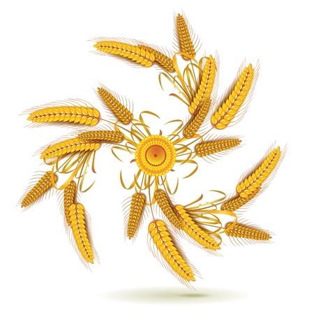 Wheat ears in spiral shape Stock Vector - 10641527