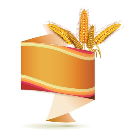 Origami background with wheat ears  Vector