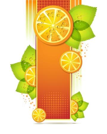 orange cut: Rodajas de naranja con hojas Vectores