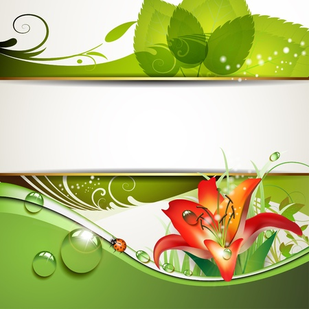 magic lily: Green background with lily and drops of water  Illustration