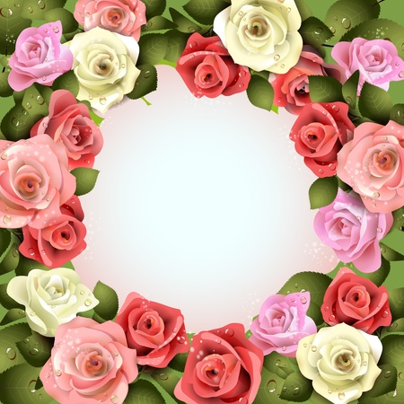 ambiance: Background with white and pink roses  Illustration