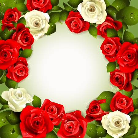 drop shadow: Background with white and red roses