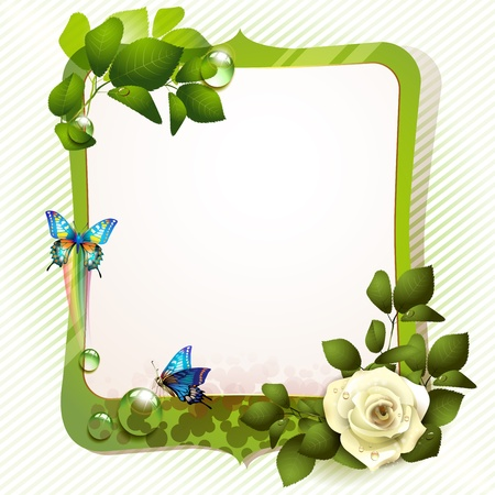 Banner with rose and butterflies Stock Vector - 12774258