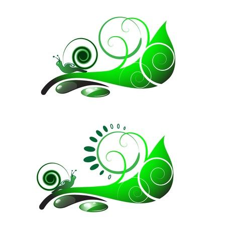 ecology background: Snail on leaf Illustration