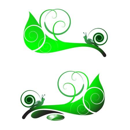 horn like: Snail on leaf