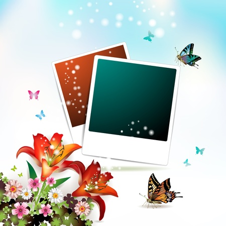 Photos collection with flowers and butterflies Vector