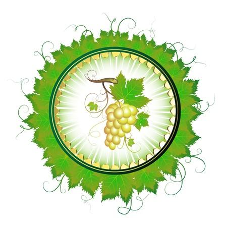 grape crop: Element label for white wine