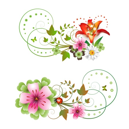 Flowers arrangement and butterflies  Vector