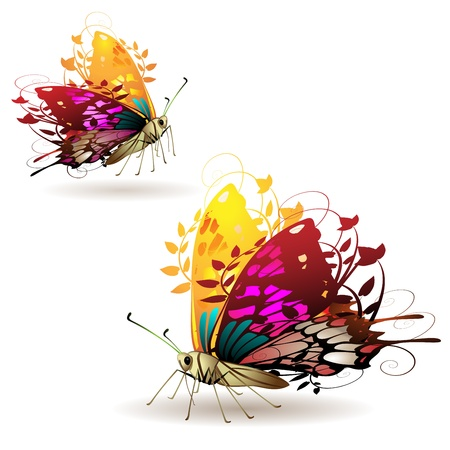 peacock butterfly: Stylized butterflies with twigs curls isolated on white background