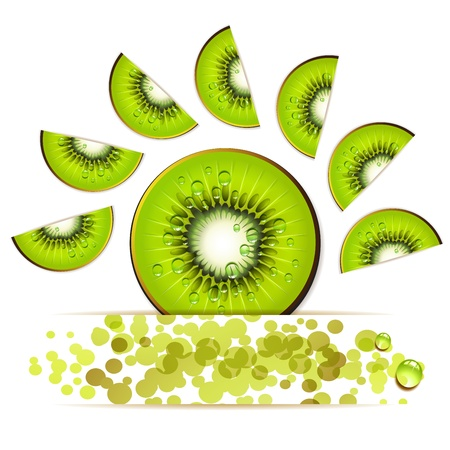Slice of kiwi in decorated form Vector