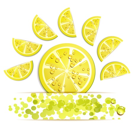 Slices of lemon in decorated form  Stock Vector - 13133877