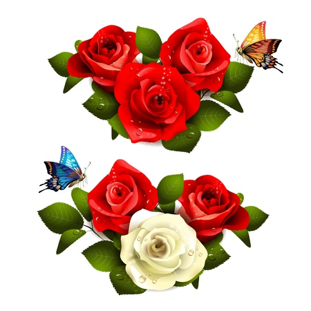 red white blue: Roses with butterflies on white background