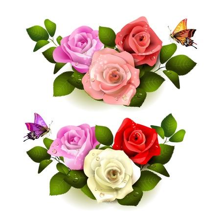 rose blanche: Roses avec des papillons sur fond blanc Illustration