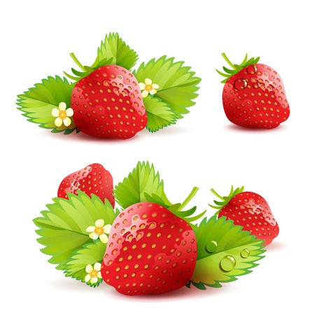 Strawberry with leafs