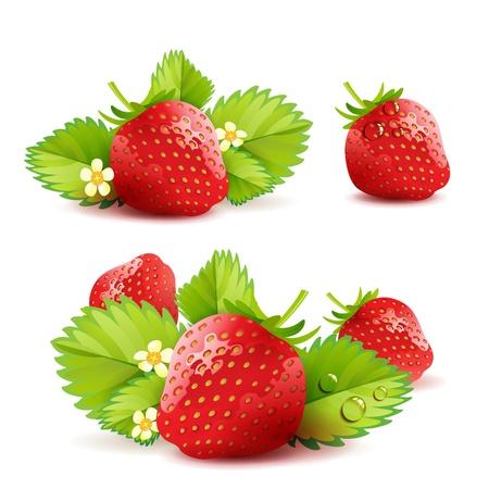 fraise: Fraise avec des feuilles Illustration
