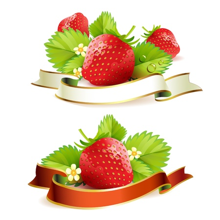 Strawberry with leafs and ribbon Illustration