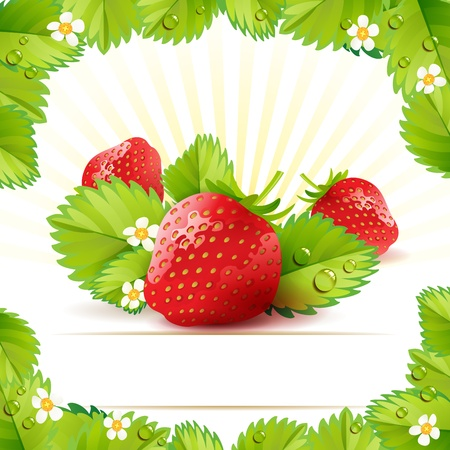 Strawberry with leafs photo