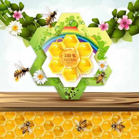 Bees and honeycombs with floral frame Vector