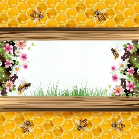 Paisaje marco con flores, abejas y panales de miel Foto de archivo - 13941180