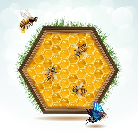 Wood frame with bees and honeycombs Stock Vector - 14228237