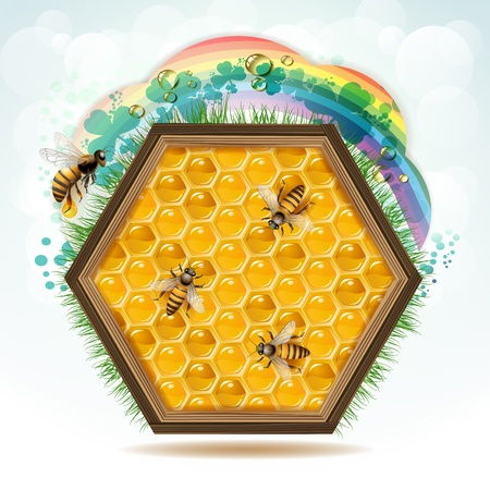 Wood frame with bees and honeycombs  Vector