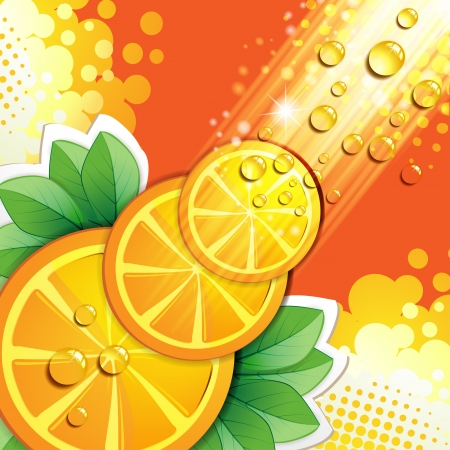 Slices orange with rays of light Vector