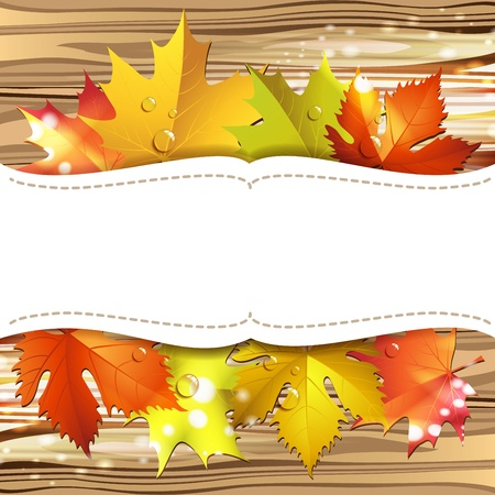 Wood background with autumn colorful leaves  Vector