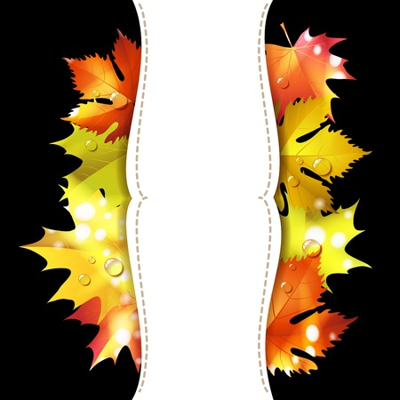 fall leaves border: Black background with autumn colorful leaves  Illustration