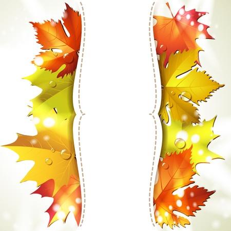 Sfondo con foglie colorate