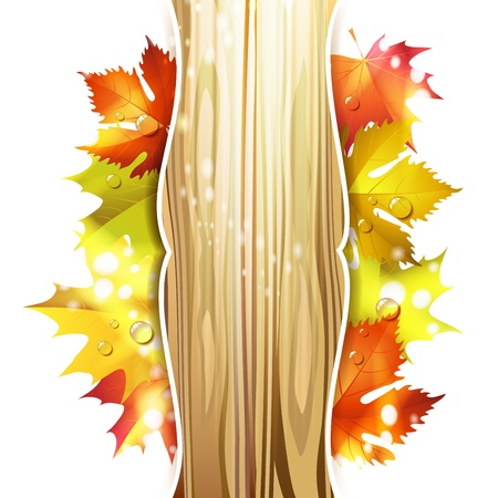 fall leaves border: Wood background with autumn colorful leaves