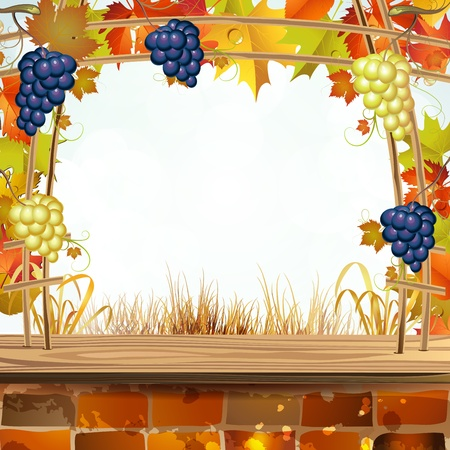 Vine arbor with autumn colorful leaves Stock Vector - 15478870
