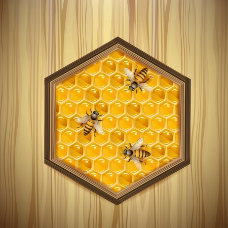 beehive: Bees and honeycombs over wood background