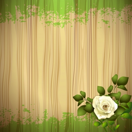 Rose over wood background Stock Vector - 16034050