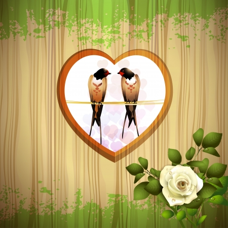roses garden: Rose with two swallows and wood background