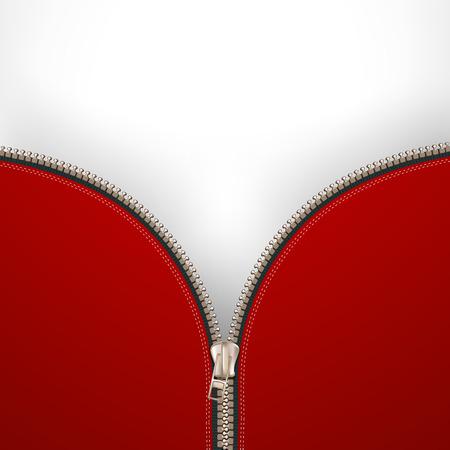 metal fastener: Background with metallic zipper