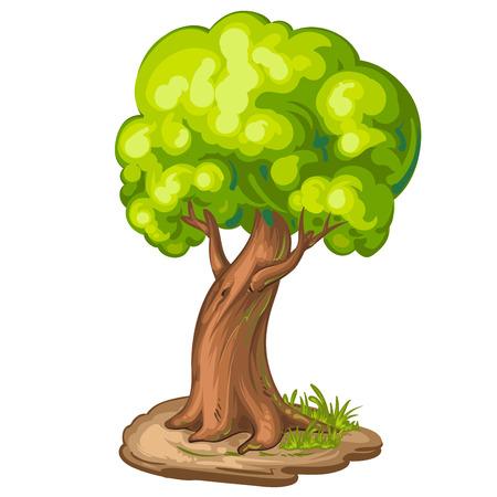 tree farming: Illustration of a closeup tree Illustration