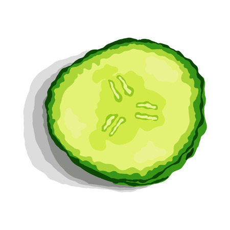 cucumber slice: Green fresh cucumber slice with shadow. Vector illustration. Illustration