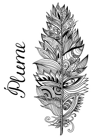 Black white hand drawn plume on the isolated background with lettering. Vector illustration.