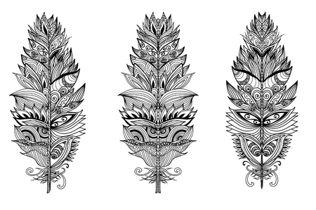 plumes: Set of hand drawn plumes on the isolated background. Vector illustration.