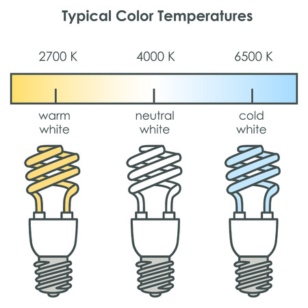 fluorescent light: Compact fluorescent light bulbs with typical color temperatures. illustration. Illustration