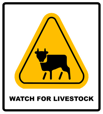 Cow Warning sign yellow. Farm Hazard attention symbol. Danger road sign yellow triangle cattle. Vector illustration isolated on white Illustration