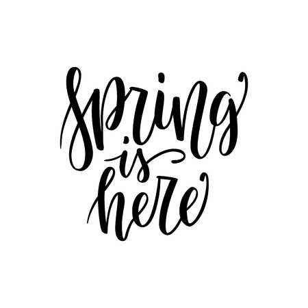 Spring is Here - Hand drawn inspiration quote isolated on white. Vector typography design element. Spring lettering poster. Good for t-shirts, prints, cards, banners