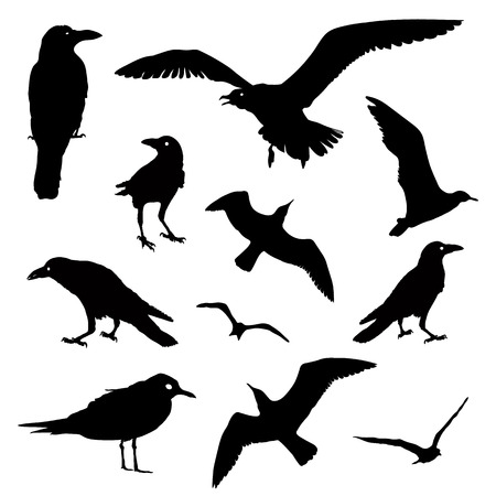 Vector Collection of Bird Silhouettes Standard-Bild - 95010907
